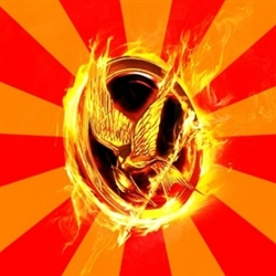 Typical fan of the hunger games
