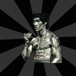 Bruce Lee Figther