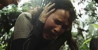 Screaming Katniss