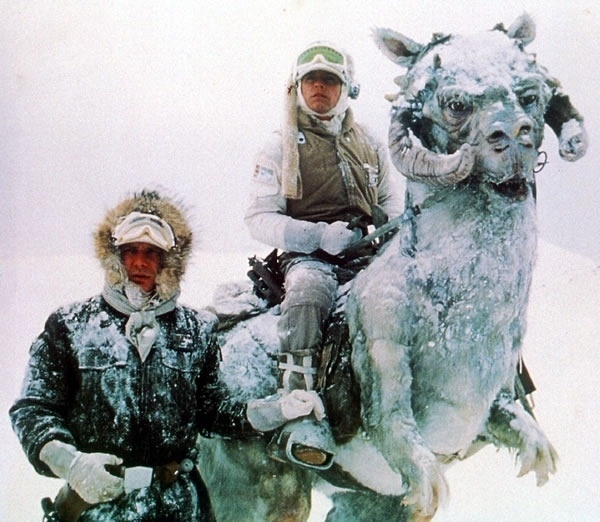 Han And Luke Star Wars TaunTaun
