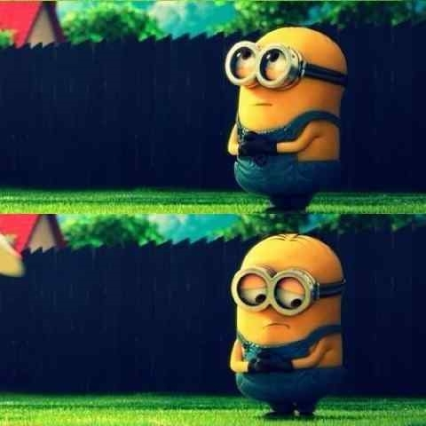 despicable me 2 ! like