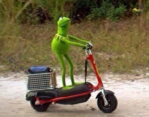 Kermit Scooter