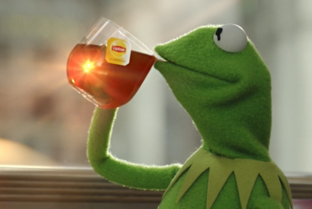 Kermit Drinking Tea No Panty Day