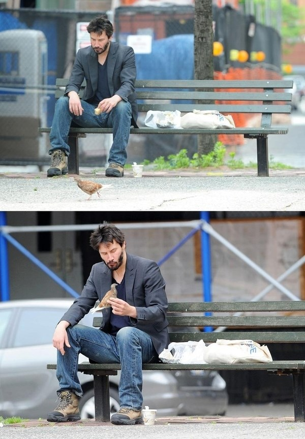 Achayespa P Sad Keanu Basterds P P Submitted By Chavespapel P Sad Meme On Me Me