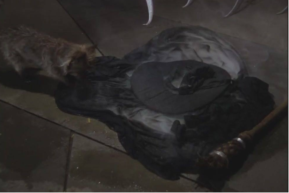 Wicked Witch of the West Takes the Ice Bucket Challenfe