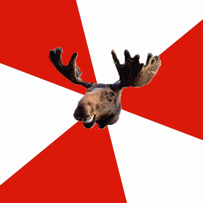Stereotypical Canadian Moose