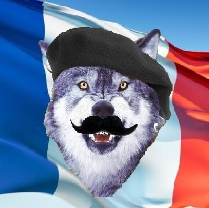 Monsieur Le Courage Wolf