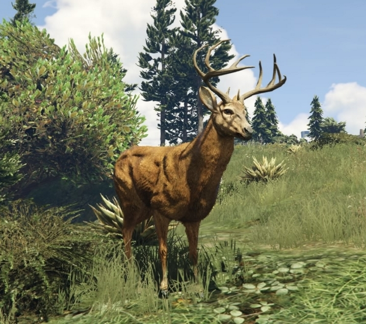 Edgar the Deer