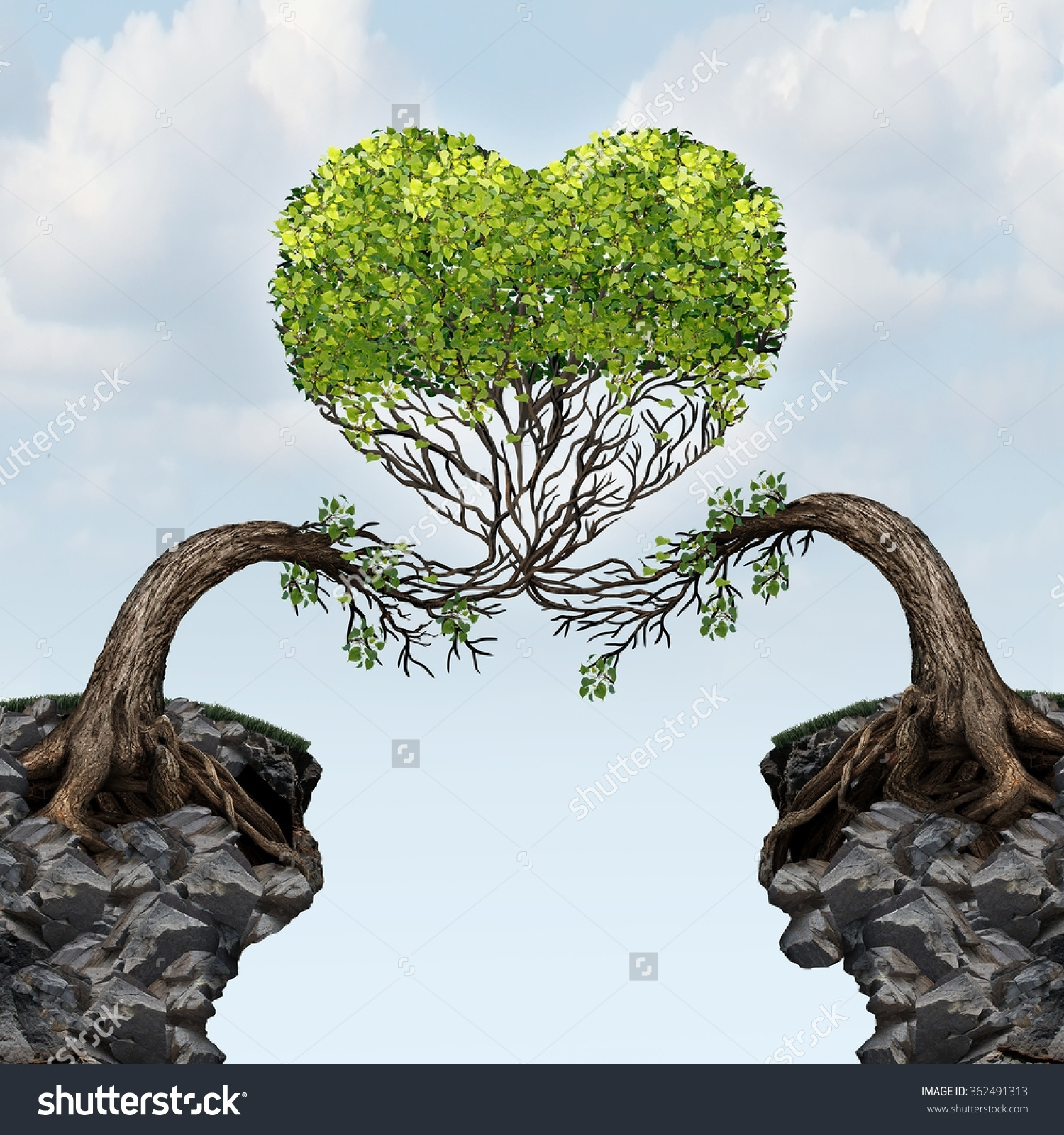 Two Trees Grow A Heart
