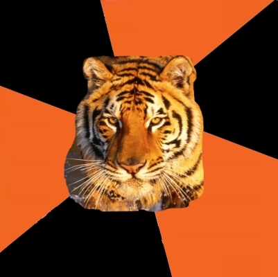 Techie Tigers