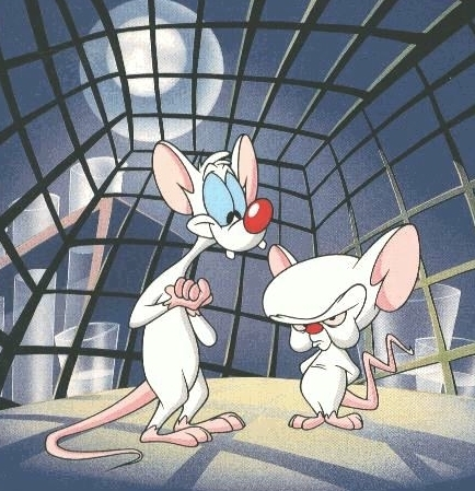 Pinky and the Brain - Meal Prep
