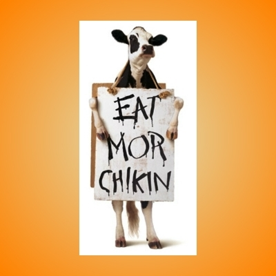 Scumbag Chick Fil A Cow
