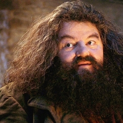 Hagrid telling harry his legacy