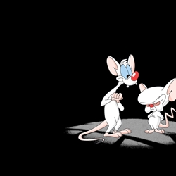 pinky and the brain doctor who