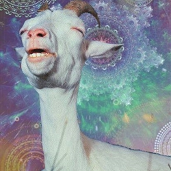 Transdimensional Space Goat