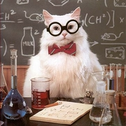 Science Cat