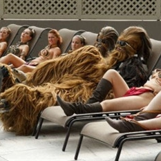 Chewbacca playa