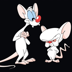 Pinky and the Brainz