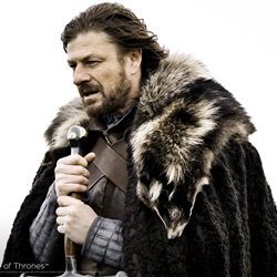Brace Yourselves Winter Is Coming