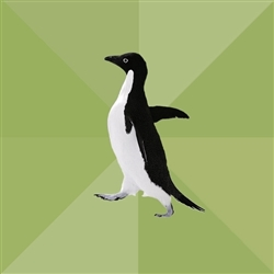 Socially Average Penguin