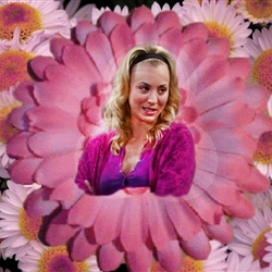 Penny-Big Bang Theory