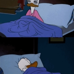 Donald Duck Sleeping