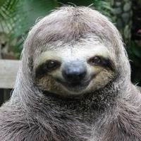 Sexual Sloth