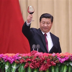 Xi Jinping toasts