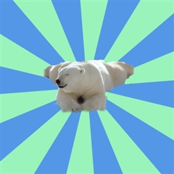 Procrastination Polar Bear