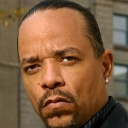 Ice T Sex Addiction Description  Examples