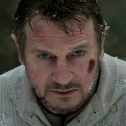 Liam Neeson The Grey