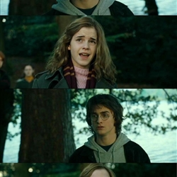 Harry Hermione Scare Tactic