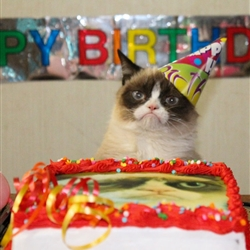 Grumpy Cat Birthday hat