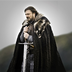 ned stark as the doctor