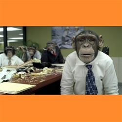 Office Chimps Meeting