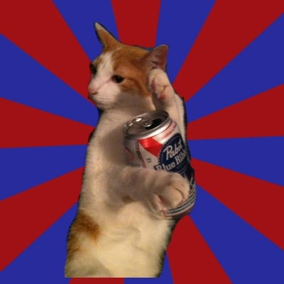 Pabst kitty