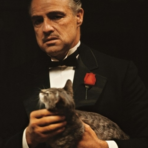 The godfather 1