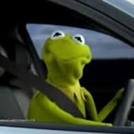 kermit the frog in car