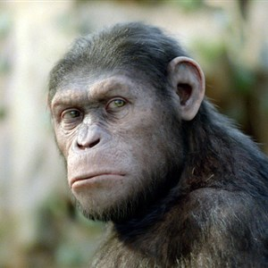Caesar from Planet of the Apes