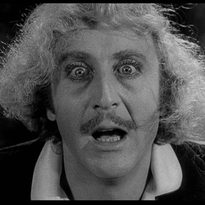 young frankenstein moment