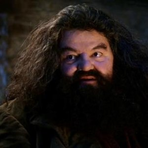 Yer A Wizard Harry Hagrid
