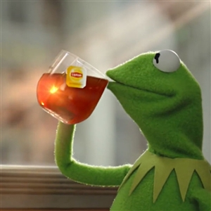 Snitching Kermit the Frog