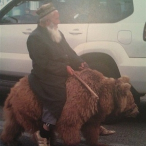 man riding a bear