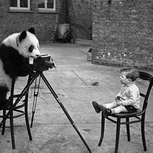 Photographer with ADD
