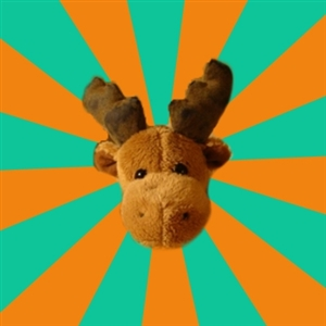 Socially Inept Moose