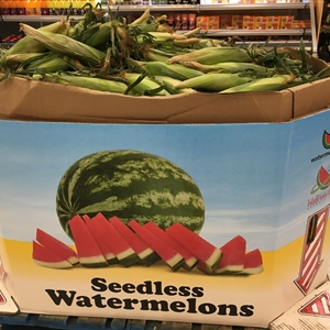 Seedless Watermelons