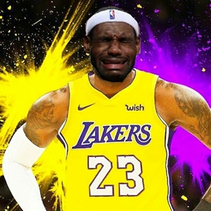 Lloron James Lakers