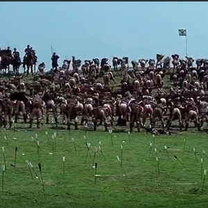 Braveheart Butts