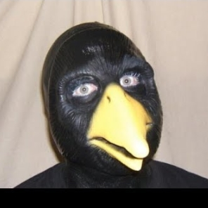 disgusted crow