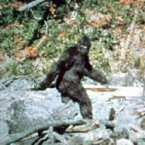 Bigfoot Frolicking